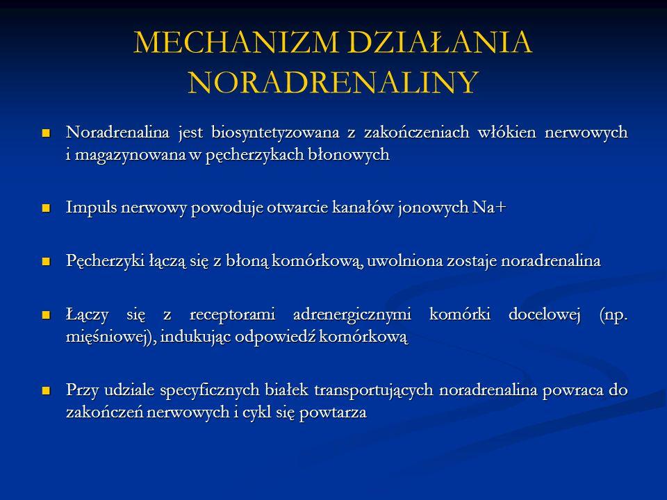 MECHANIZM DZIAŁANIA NORADRENALINY Noradrenalina jest biosyntetyzowana z zakończeniach włókien nerwowych i magazynowana w pęcherzykach błonowych Noradrenalina jest biosyntetyzowana z zakończeniach włókien nerwowych i magazynowana w pęcherzykach błonowych Impuls nerwowy powoduje otwarcie kanałów jonowych Na+ Impuls nerwowy powoduje otwarcie kanałów jonowych Na+ Pęcherzyki łączą się z błoną komórkową, uwolniona zostaje noradrenalina Pęcherzyki łączą się z błoną komórkową, uwolniona zostaje noradrenalina Łączy się z receptorami adrenergicznymi komórki docelowej (np.