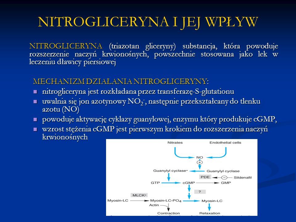 NITROGLICERYNA I JEJ WPŁYW NITROGLICERYNA (triazotan gliceryny) substancja, która powoduje rozszerzenie naczyń krwionośnych, powszechnie stosowana jako lek w leczeniu dławicy piersiowej MECHANIZM DZIAŁANIA NITROGLICERYNY: nitrogliceryna jest rozkładana przez transferazę-S-glutationu nitrogliceryna jest rozkładana przez transferazę-S-glutationu uwalnia się jon azotynowy NO 2 -, następnie przekształcany do tlenku azotu (NO) uwalnia się jon azotynowy NO 2 -, następnie przekształcany do tlenku azotu (NO) powoduje aktywację cyklazy guanylowej, enzymu który produkuje cGMP, powoduje aktywację cyklazy guanylowej, enzymu który produkuje cGMP, wzrost stężenia cGMP jest pierwszym krokiem do rozszerzenia naczyń krwionośnych wzrost stężenia cGMP jest pierwszym krokiem do rozszerzenia naczyń krwionośnych