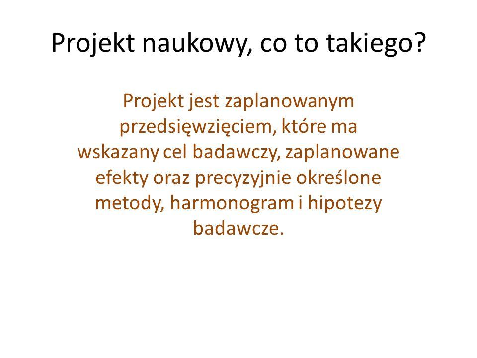 Wersje językowe składanych wniosków Streszczenie projektu badawczego maks.