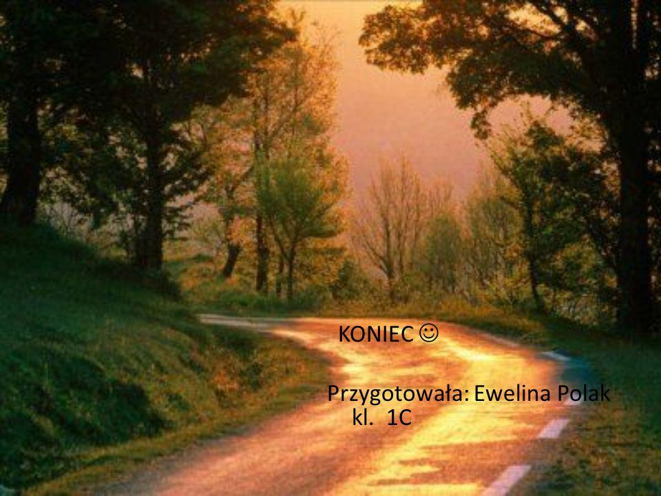 KONIEC Przygotowała: Ewelina Polak kl. 1C