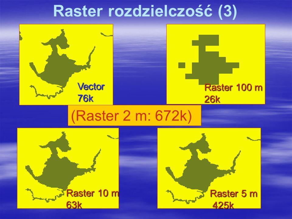 Vector76k Raster 5 m 425k 425k Raster 10 m 63k Raster 100 m 26k (Raster 2 m: 672k) Raster rozdzielczość (3)