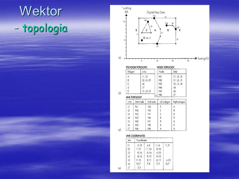 Wektor - topologia
