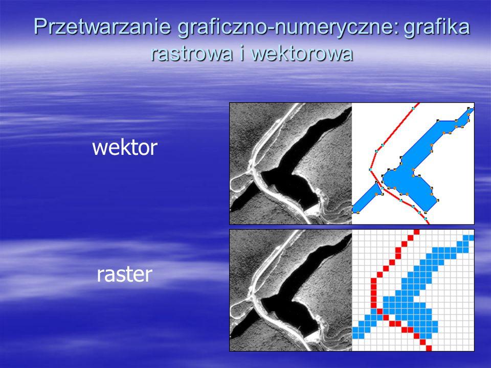 Przetwarzanie graficzno-numeryczne: grafika rastrowa i wektorowa wektor raster