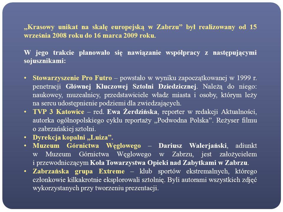 """""""Krasowy unikat na skalę europejską w Zabrzu był realizowany od 15 września 2008 roku do 16 marca 2009 roku."""