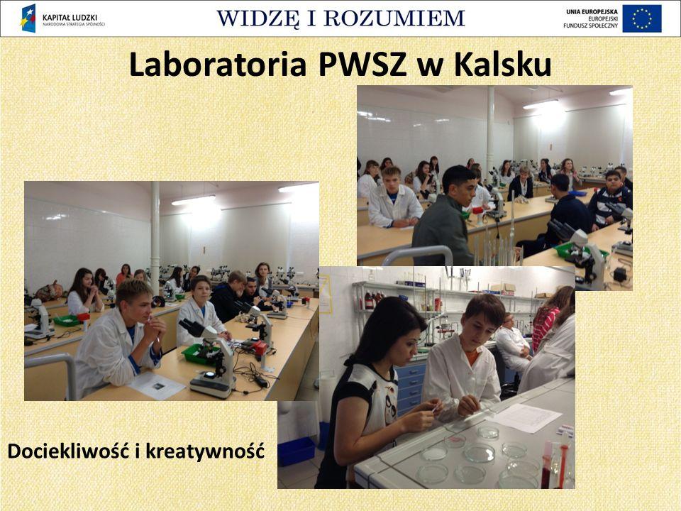 Dociekliwość i kreatywność Laboratoria PWSZ w Kalsku