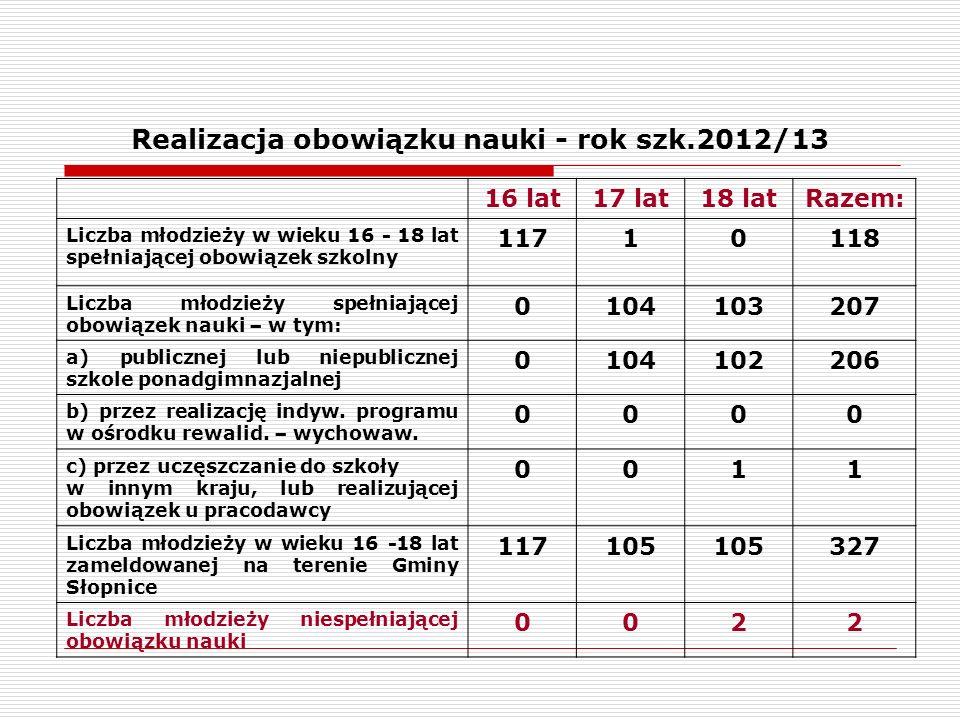 Osiągnięcia uczniów - rok szk. 2012/13