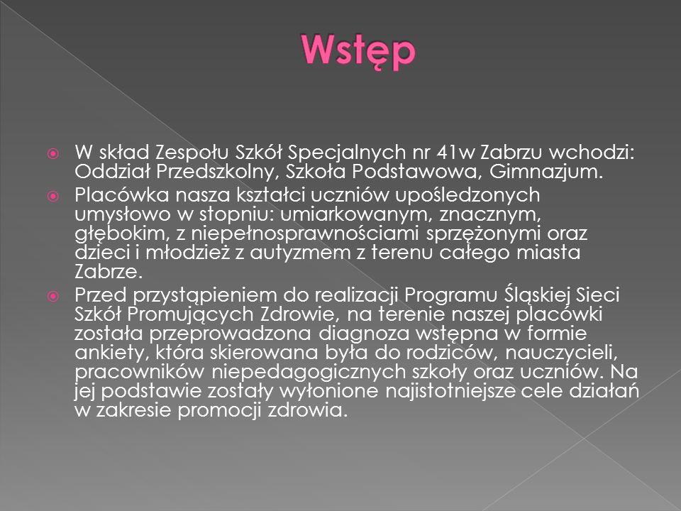  W skład Zespołu Szkół Specjalnych nr 41w Zabrzu wchodzi: Oddział Przedszkolny, Szkoła Podstawowa, Gimnazjum.