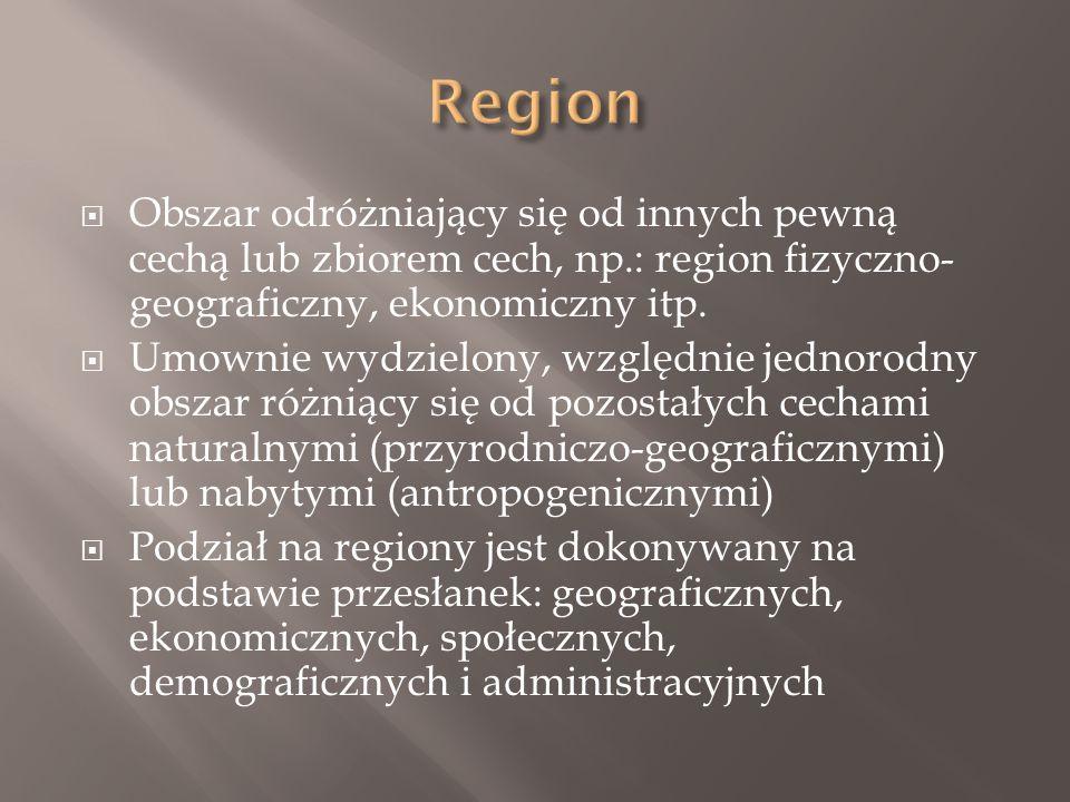  Obszar odróżniający się od innych pewną cechą lub zbiorem cech, np.: region fizyczno- geograficzny, ekonomiczny itp.