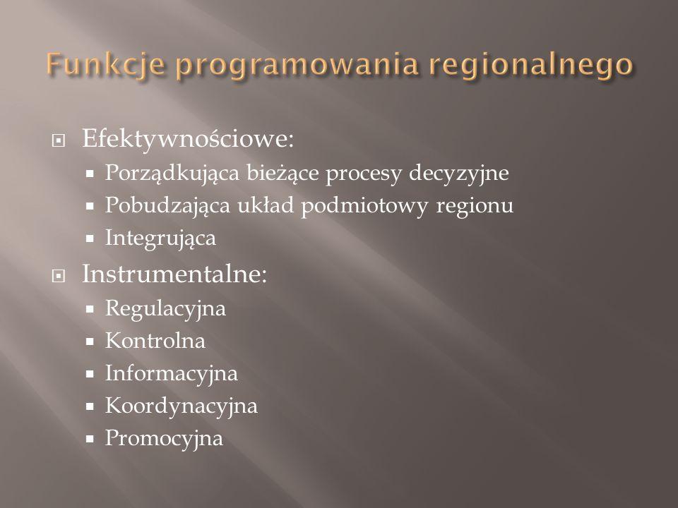  Efektywnościowe:  Porządkująca bieżące procesy decyzyjne  Pobudzająca układ podmiotowy regionu  Integrująca  Instrumentalne:  Regulacyjna  Kontrolna  Informacyjna  Koordynacyjna  Promocyjna