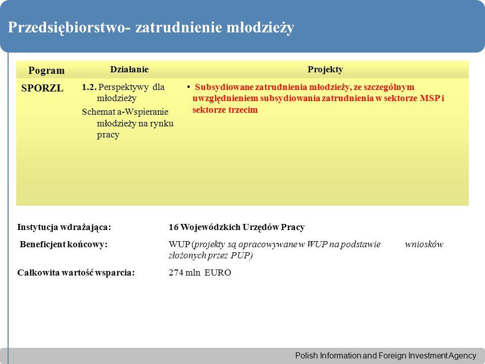 Polish Information and Foreign Investment Agency Przedsiębiorstwo- zatrudnienie młodzieży Pogram DziałanieProjekty SPORZL 1.2. Perspektywy dla młodzie