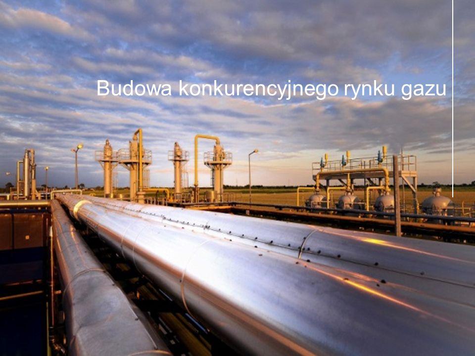 8  W regionie Europy Środkowej fizycznie dostępny jest tylko gaz rosyjski.