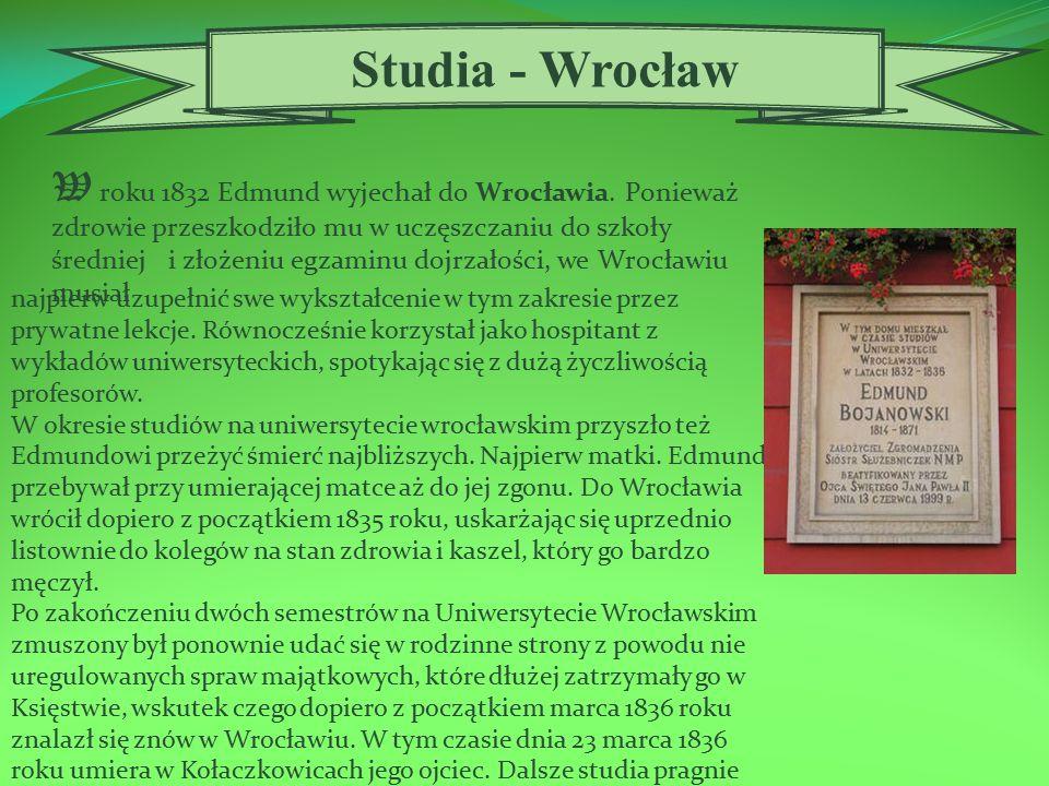 Wykonawca: Dorota Janiec kl. II al. RCEZ - Nisko