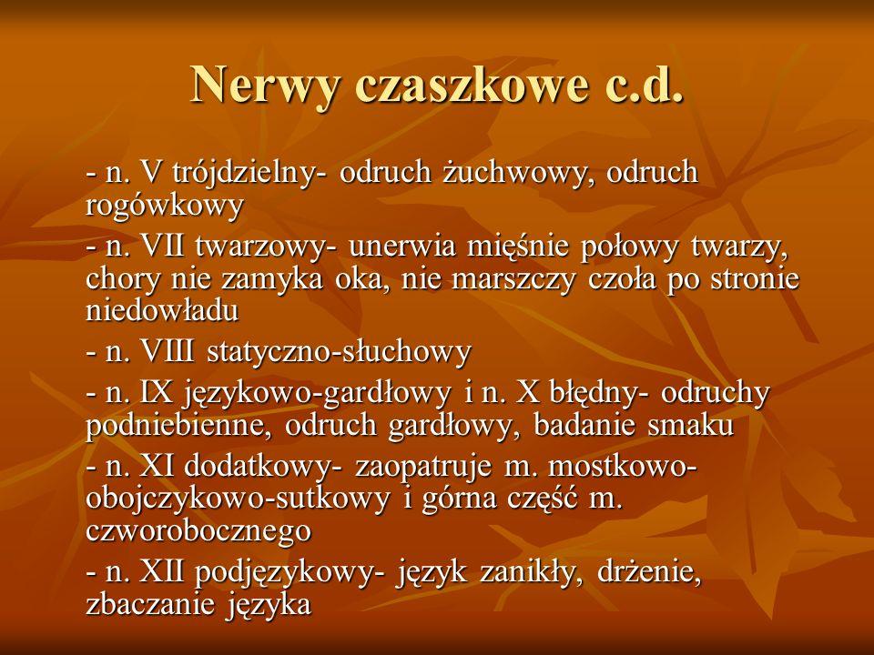 Nerwy czaszkowe c.d. - n. V trójdzielny- odruch żuchwowy, odruch rogówkowy - n. VII twarzowy- unerwia mięśnie połowy twarzy, chory nie zamyka oka, nie