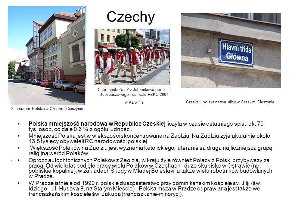 Polska mniejszość narodowa w Republice Czeskiej liczyła w czasie ostatniego spisu ok. 70 tys. osób, co daje 0,6 % z ogółu ludności. Mniejszość Polska