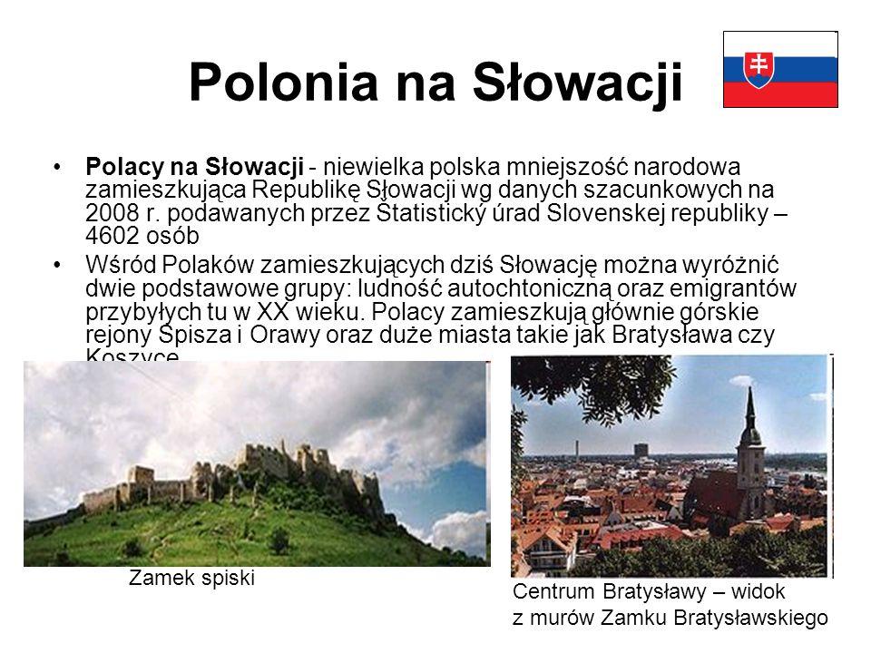 Polonia na Słowacji Polacy na Słowacji - niewielka polska mniejszość narodowa zamieszkująca Republikę Słowacji wg danych szacunkowych na 2008 r.