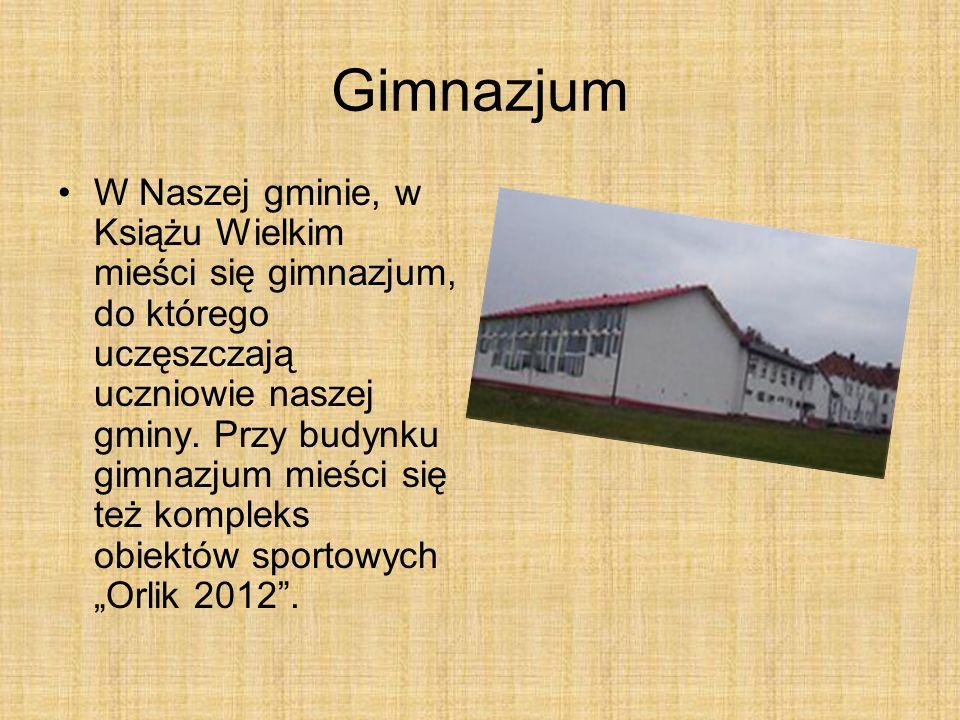 Gimnazjum W Naszej gminie, w Książu Wielkim mieści się gimnazjum, do którego uczęszczają uczniowie naszej gminy.
