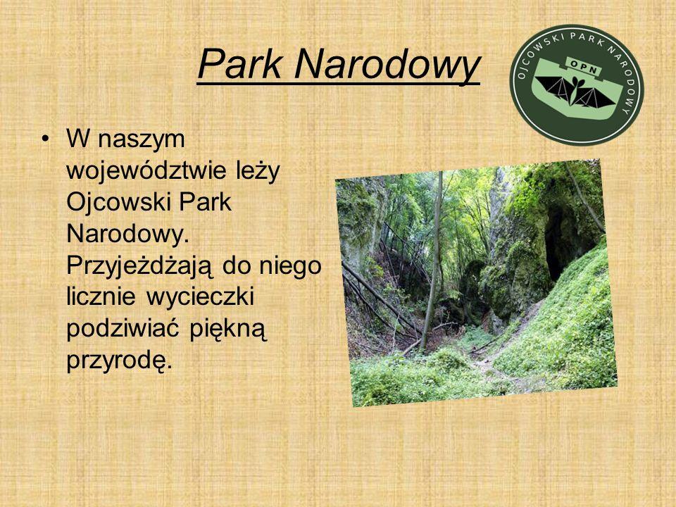 Park Narodowy W naszym województwie leży Ojcowski Park Narodowy.