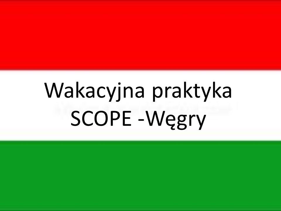 Wakacyjna praktyka SCOPE -Węgry