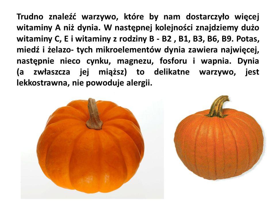 To znane i powszechne warzywo jest skarbnicą witamin i minerałów.