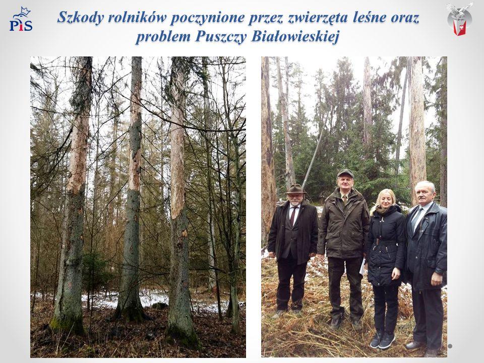 Szkody rolników poczynione przez zwierzęta leśne oraz problem Puszczy Białowieskiej Szkody rolników poczynione przez zwierzęta leśne oraz problem Puszczy Białowieskiej