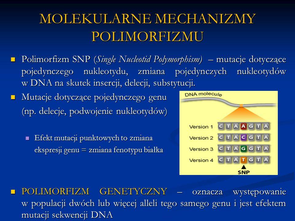MOLEKULARNE MECHANIZMY POLIMORFIZMU Polimorfizm SNP (Single Nucleotid Polymorphism) – mutacje dotyczące pojedynczego nukleotydu, zmiana pojedynczych nukleotydów w DNA na skutek insercji, delecji, substytucji.