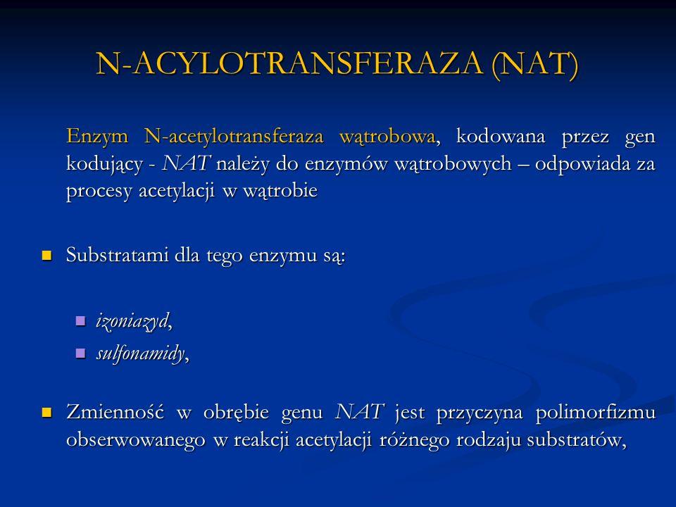 N-ACYLOTRANSFERAZA (NAT) Enzym N-acetylotransferaza wątrobowa, kodowana przez gen kodujący - NAT należy do enzymów wątrobowych – odpowiada za procesy acetylacji w wątrobie Substratami dla tego enzymu są: Substratami dla tego enzymu są: izoniazyd, izoniazyd, sulfonamidy, sulfonamidy, Zmienność w obrębie genu NAT jest przyczyna polimorfizmu obserwowanego w reakcji acetylacji różnego rodzaju substratów, Zmienność w obrębie genu NAT jest przyczyna polimorfizmu obserwowanego w reakcji acetylacji różnego rodzaju substratów,