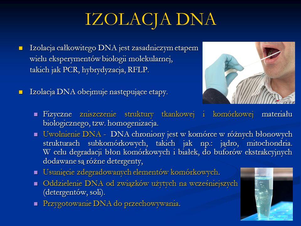 IZOLACJA DNA Izolacja całkowitego DNA jest zasadniczym etapem Izolacja całkowitego DNA jest zasadniczym etapem wielu eksperymentów biologii molekularnej, takich jak PCR, hybrydyzacja, RFLP.