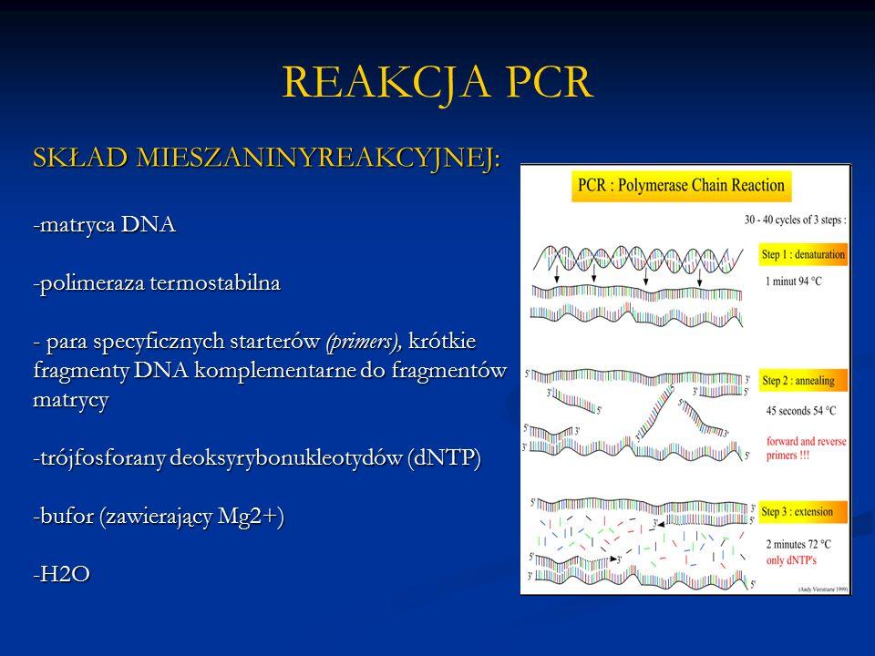 REAKCJA PCR SKŁAD MIESZANINYREAKCYJNEJ: -matryca DNA -polimeraza termostabilna - para specyficznych starterów (primers), krótkie fragmenty DNA komplementarne do fragmentów matrycy -trójfosforany deoksyrybonukleotydów (dNTP) -bufor (zawierający Mg2+) -H2O