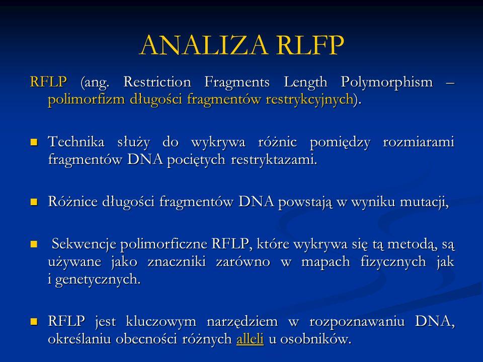 ANALIZA RLFP RFLP (ang.