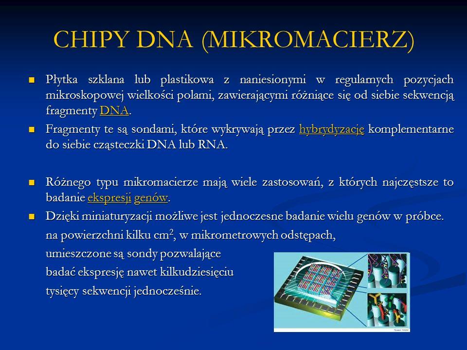 CHIPY DNA (MIKROMACIERZ) Płytka szklana lub plastikowa z naniesionymi w regularnych pozycjach mikroskopowej wielkości polami, zawierającymi różniące się od siebie sekwencją fragmenty DNA.