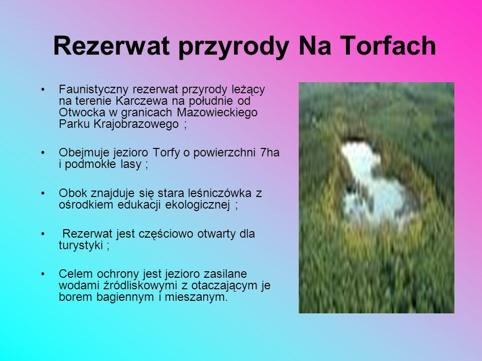 Przedmiotem ochrony jest torfowisko wysokie i przejściowe oraz otaczające je wydmy z charakterystyczną florą i fauną. Rosną tu m.in. charakterystyczne