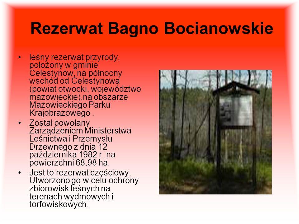 Rezerwat Bagno Bocianowskie leśny rezerwat przyrody, położony w gminie Celestynów, na północny wschód od Celestynowa (powiat otwocki, województwo mazowieckie),na obszarze Mazowieckiego Parku Krajobrazowego.