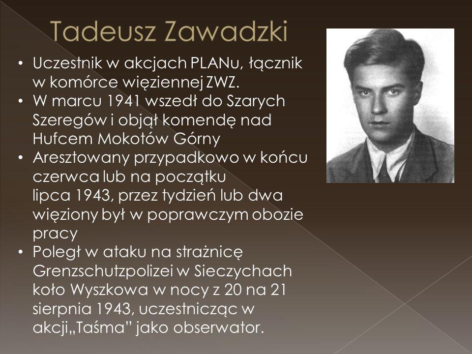 Uczestnik w akcjach PLANu, łącznik w komórce więziennej ZWZ.