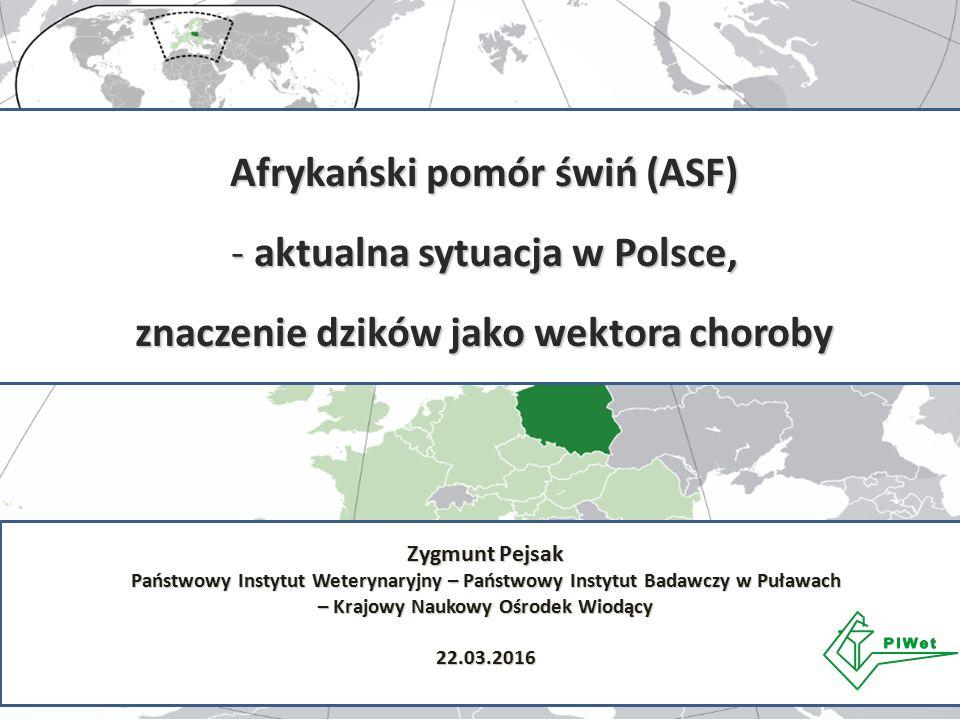 Afrykański pomór świń (ASF) - aktualna sytuacja w Polsce, znaczenie dzików jako wektora choroby Zygmunt Pejsak Państwowy Instytut Weterynaryjny – Pańs