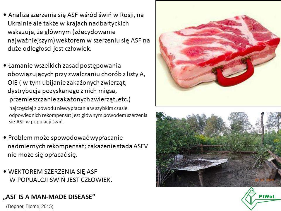 Analiza szerzenia się ASF wśród świń w Rosji, na Ukrainie ale także w krajach nadbałtyckich wskazuje, że głównym (zdecydowanie najważniejszym) wektorem w szerzeniu się ASF na duże odległości jest człowiek.