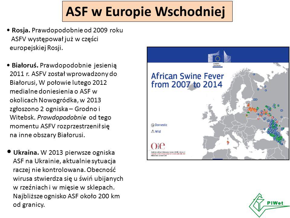 ASF w Europie Wschodniej Rosja. Prawdopodobnie od 2009 roku ASFV występował już w części europejskiej Rosji. Białoruś. Prawdopodobnie jesienią 2011 r.