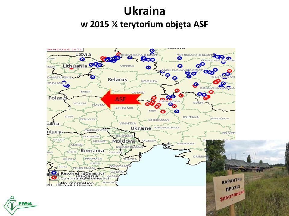 ASF Ukraina w 2015 ¼ terytorium objęta ASF