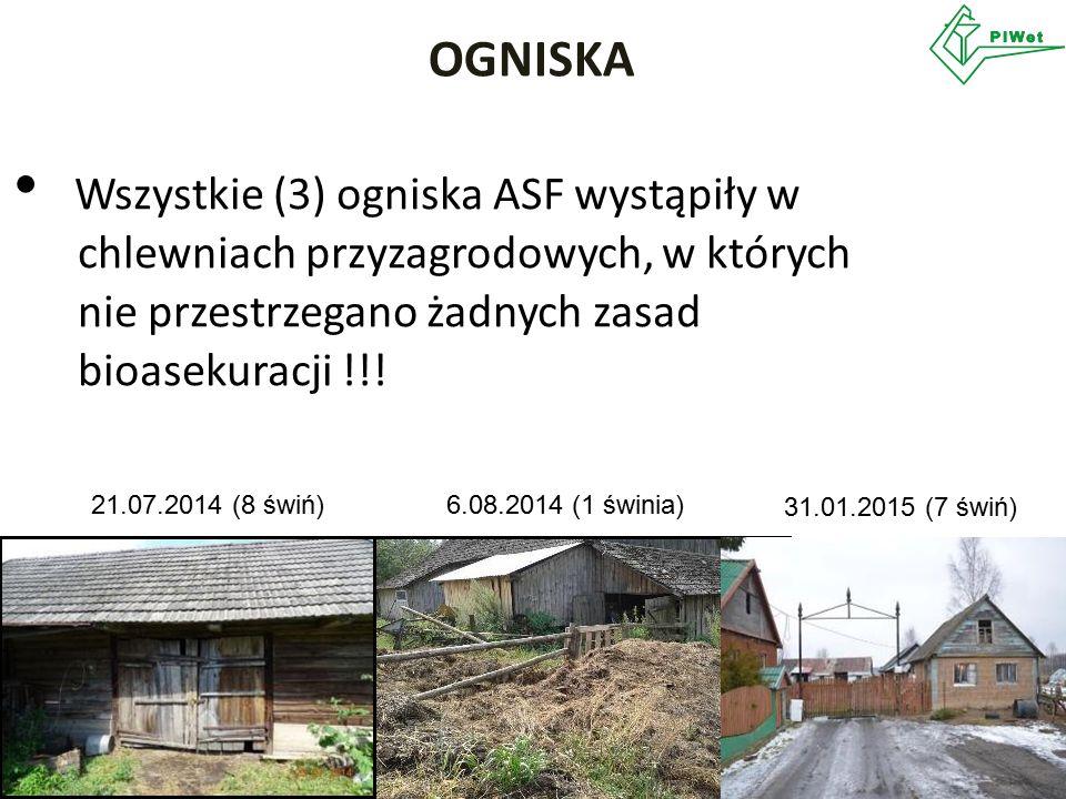 Wszystkie (3) ogniska ASF wystąpiły w chlewniach przyzagrodowych, w których nie przestrzegano żadnych zasad bioasekuracji !!! OGNISKA 21.07.2014 (8 św