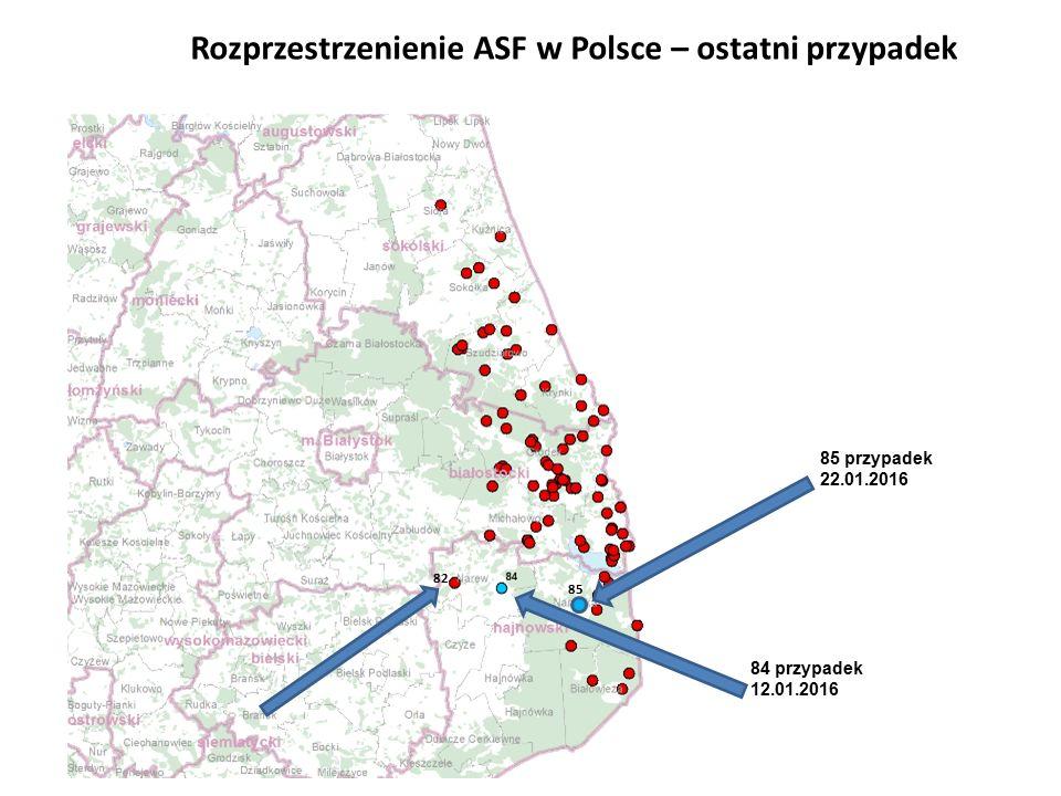 84 przypadek 12.01.2016 Rozprzestrzenienie ASF w Polsce – ostatni przypadek 82 85 przypadek 22.01.2016 85