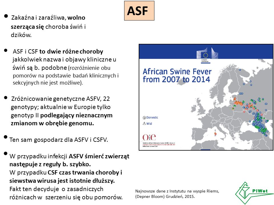 ASF Zakaźna i zaraźliwa, wolno szerząca się choroba świń i dzików. ASF i CSF to dwie różne choroby jakkolwiek nazwa i objawy kliniczne u świń są b. po