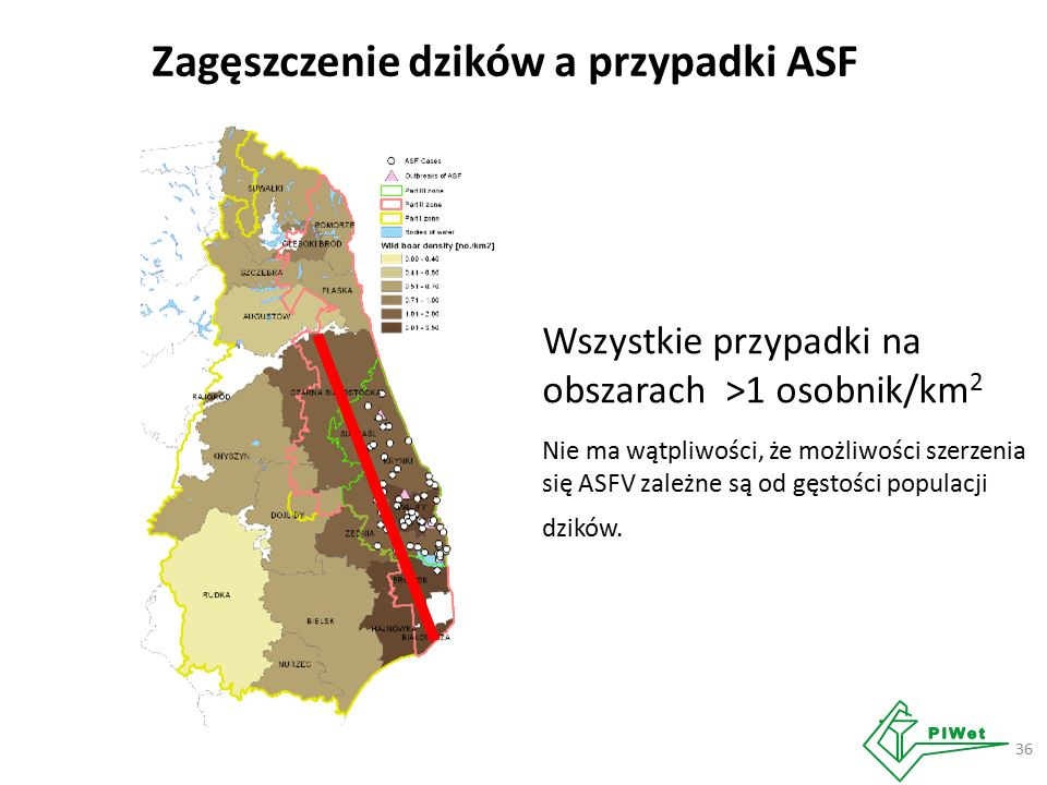 Zagęszczenie dzików a przypadki ASF 36 Wszystkie przypadki na obszarach >1 osobnik/km 2 Nie ma wątpliwości, że możliwości szerzenia się ASFV zależne są od gęstości populacji dzików.