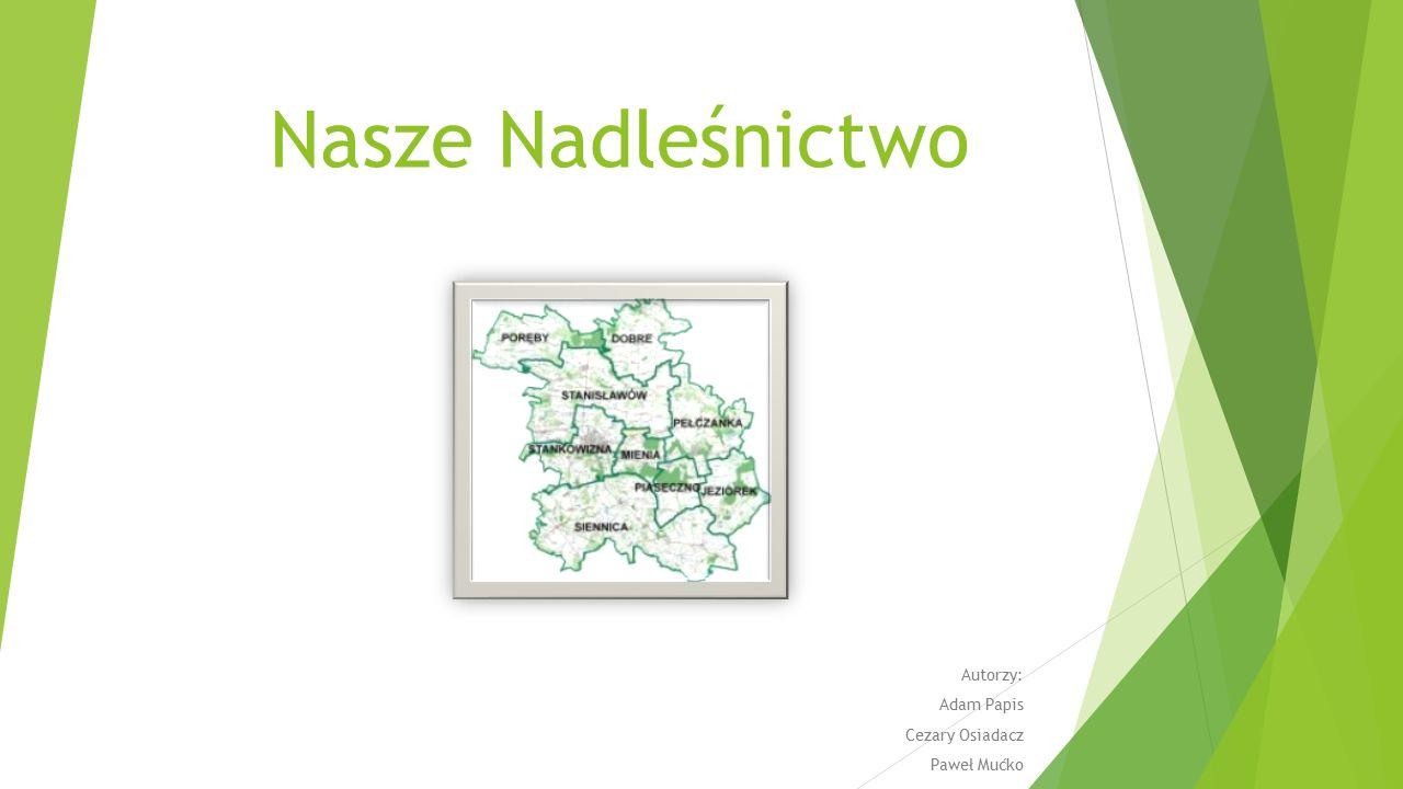 Położenie nadleśnictwa Lasy Nadleśnictwa Mińsk leżą między 51º a 52º szerokości geograficznej północnej i 21º a 22º długości geograficznej wschodniej.