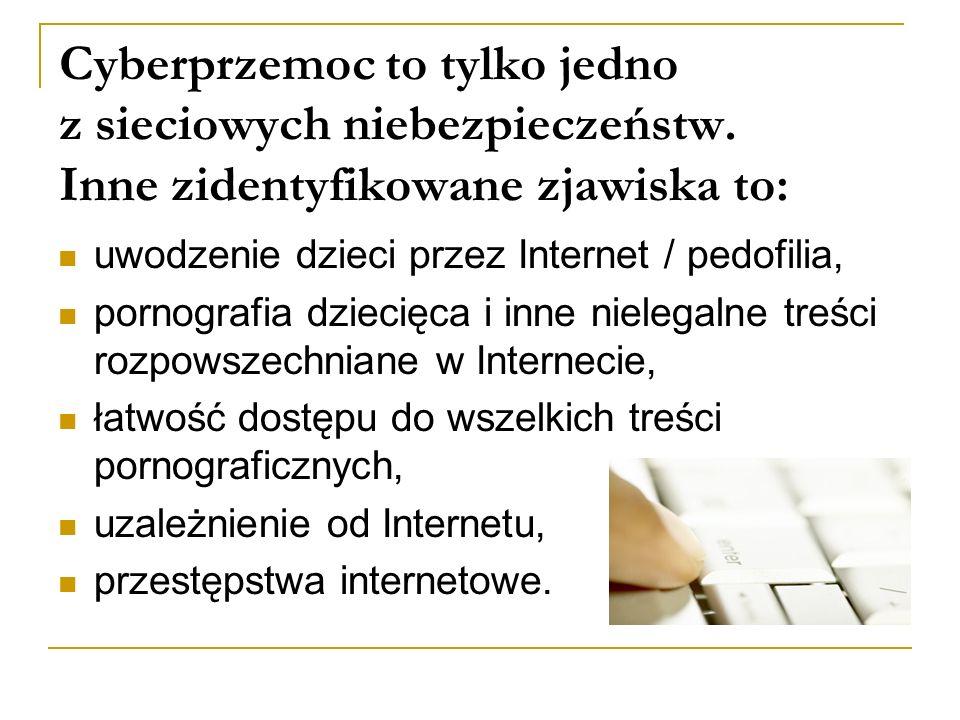 Cyberprzemoc to tylko jedno z sieciowych niebezpieczeństw. Inne zidentyfikowane zjawiska to: uwodzenie dzieci przez Internet / pedofilia, pornografia