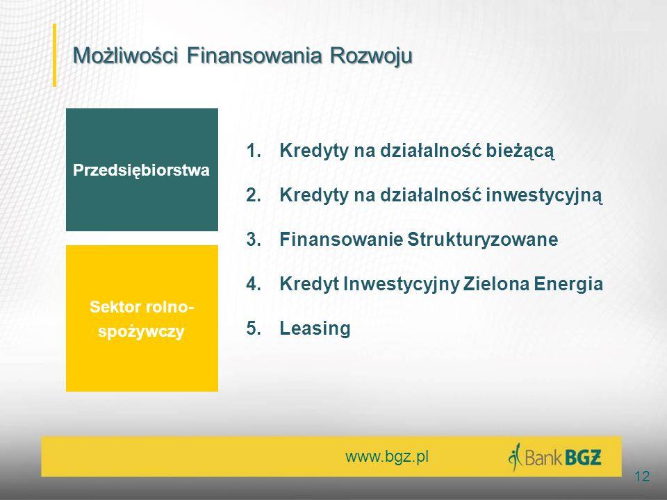 www.bgz.pl 12 Przedsiębiorstwa Sektor rolno- spożywczy 1.Kredyty na działalność bieżącą 2.Kredyty na działalność inwestycyjną 3.Finansowanie Strukturyzowane 4.Kredyt Inwestycyjny Zielona Energia 5.Leasing Możliwości Finansowania Rozwoju
