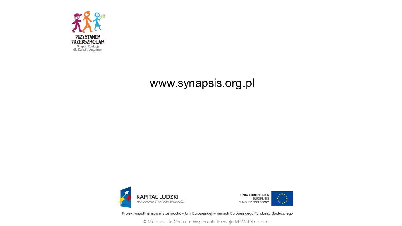 www.synapsis.org.pl © Małopolskie Centrum Wspierania Rozwoju MCWR Sp. z o.o.