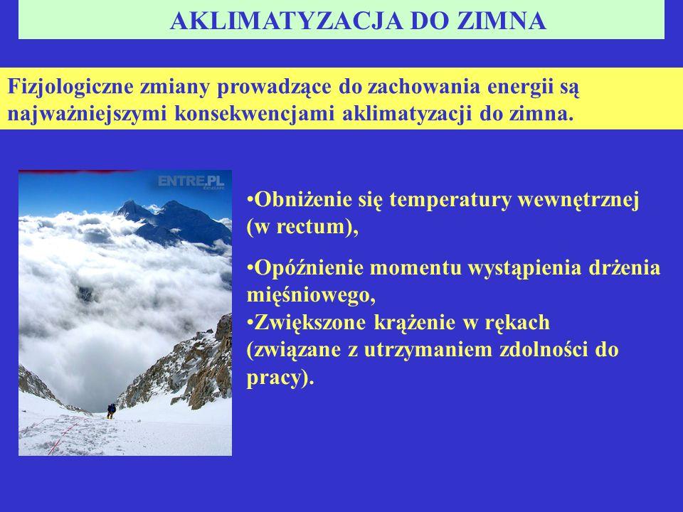 AKLIMATYZACJA DO ZIMNA Fizjologiczne zmiany prowadzące do zachowania energii są najważniejszymi konsekwencjami aklimatyzacji do zimna.