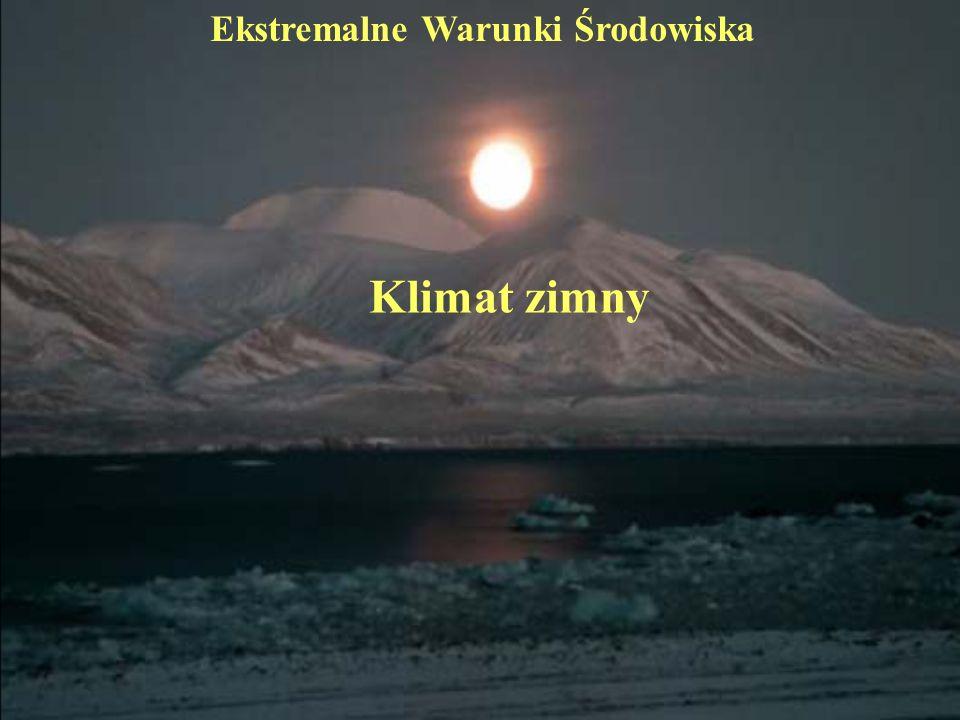 Klimat zimny Ekstremalne Warunki Środowiska