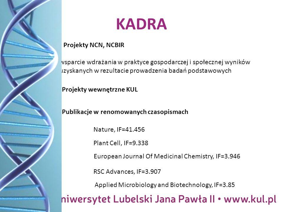 KADRA Projekty NCN, NCBIR wsparcie wdrażania w praktyce gospodarczej i społecznej wyników uzyskanych w rezultacie prowadzenia badań podstawowych Projekty wewnętrzne KUL Nature, IF=41.456 Publikacje w renomowanych czasopismach Applied Microbiology and Biotechnology, IF=3.85 European Journal Of Medicinal Chemistry, IF=3.946 RSC Advances, IF=3.907 Plant Cell, IF=9.338