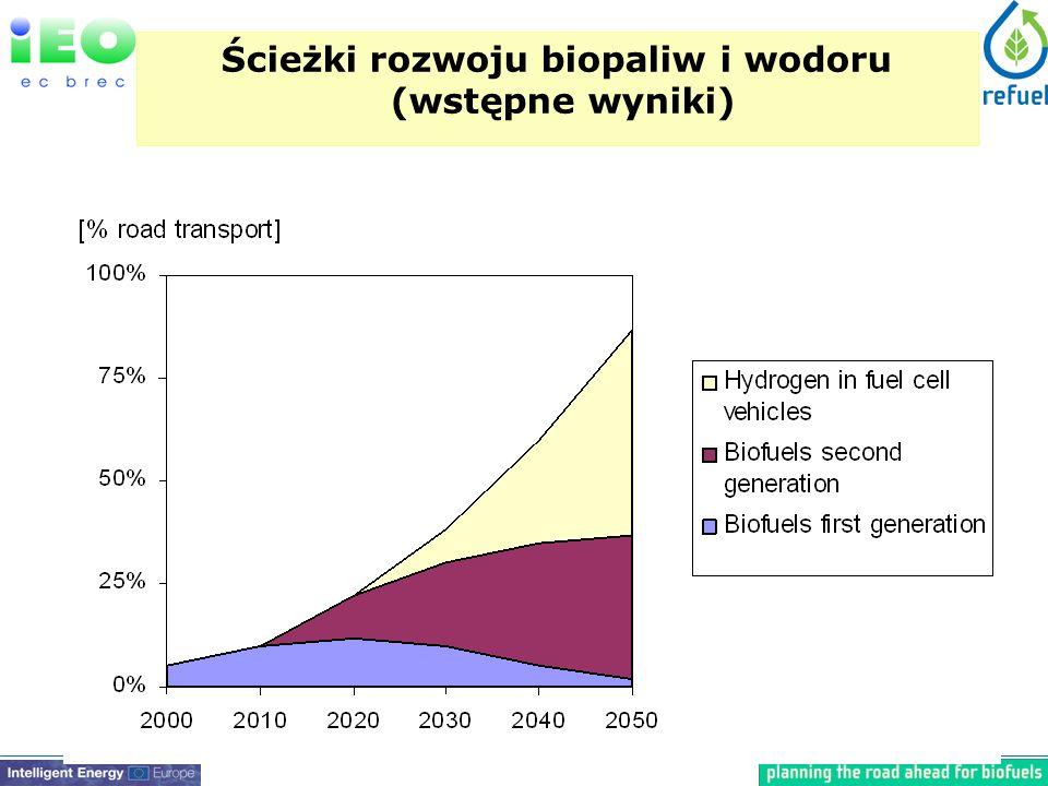 Ścieżki rozwoju biopaliw i wodoru (wstępne wyniki)