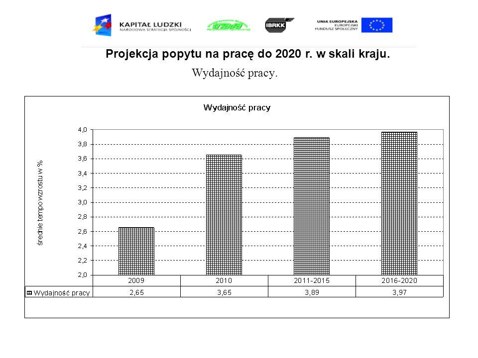 Projekcja popytu na pracę do 2020 r. w skali kraju. Wydajność pracy.